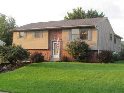 Stevens Single Family Home For Sale: 37 Stony Run
