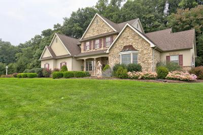 Manheim Single Family Home For Sale: 2274 Camp Road