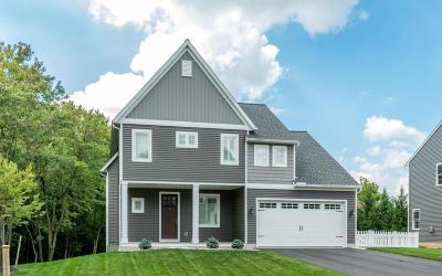 Lititz Single Family Home For Sale: 109 Shober Lane