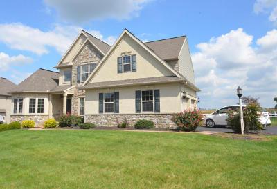 Single Family Home For Sale: 135 Bonneville Drive