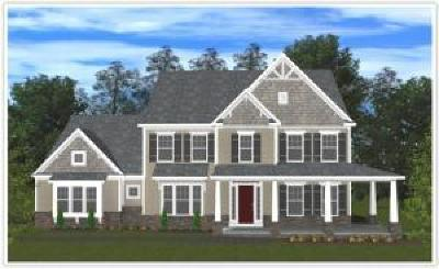 Lititz Single Family Home For Sale: Springview Drive