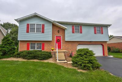 Ephrata Single Family Home For Sale: 222 Stephen Lane