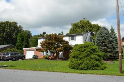 Ephrata Single Family Home For Sale: 39 Walnut Drive