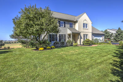 New Holland Single Family Home For Sale: 1175 Sheep Hill Road