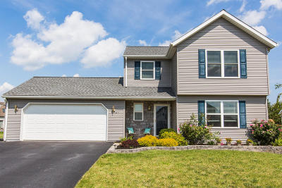 New Holland Single Family Home For Sale: 505 Lavender Lane