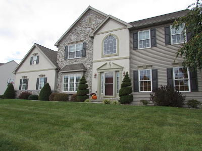 Ephrata Single Family Home For Sale: 41 Meadow Drive