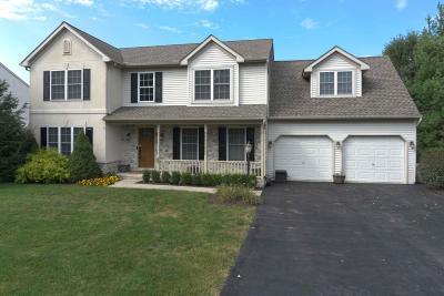 Ephrata Single Family Home For Sale: 60 Rock Road
