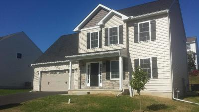 Manheim Single Family Home For Sale: 230 Loghes Drive