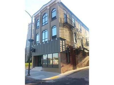 Allentown City Multi Family Home Available: 24 South 8th Street