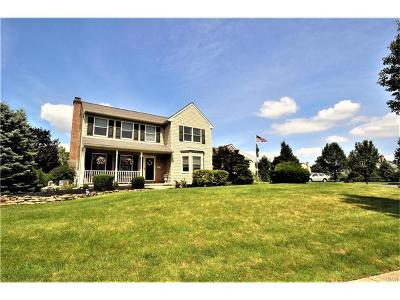 Lehigh County Single Family Home Available: 387 Natalie Drive