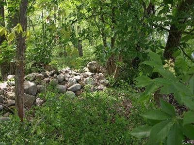 Washington Twp PA Residential Lots & Land Available: $39,900