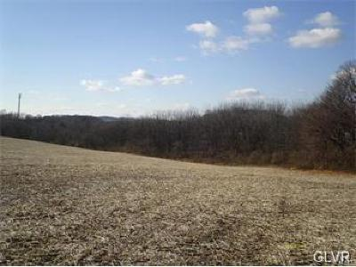 Residential Lots & Land Available: 6718 Ryan Court #10