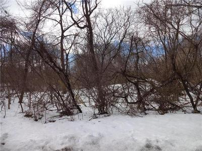 Residential Lots & Land Available: 103 Skyline Drive