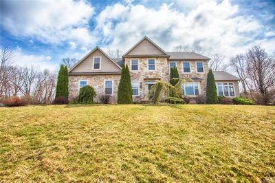 Single Family Home Available: 226 Bushkill Terrace