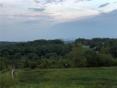 Coopersburg Borough Residential Lots & Land Available: 6018 Patrick, Lot 41 Lane
