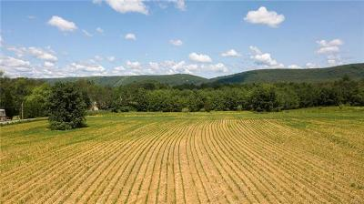 Residential Lots & Land Available: Mountain View Drive
