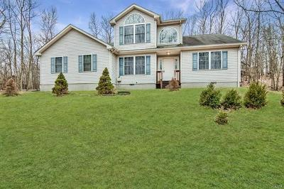 Pike County PA Single Family Home Available: $195,000
