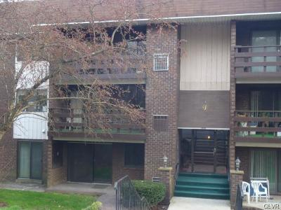 Single Family Home Available: 1590 Alta Drive #D 11