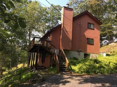 Pike County PA Single Family Home Available: $89,900