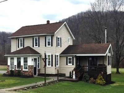 Single Family Home For Sale: 6890 Route 155