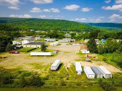 McKean County Single Family Home For Sale: 30-32 Main Street