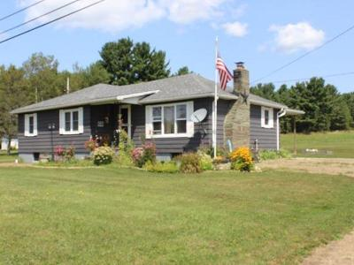 Potter County Single Family Home For Sale: 1855 State Route 44 South