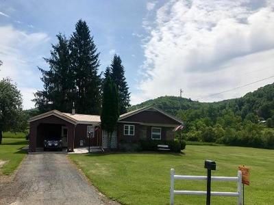 Potter County Single Family Home For Sale: 40 Atkins Road