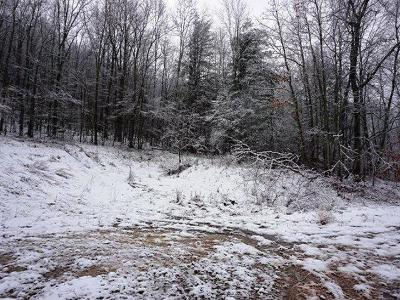 McKean County Residential Lots & Land For Sale: Garlock Hollow
