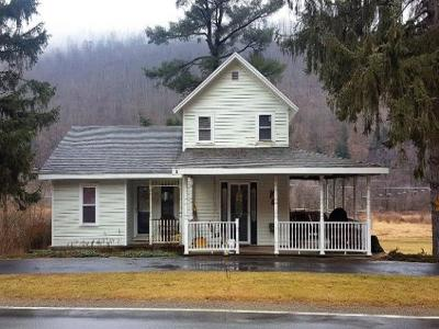 Potter County Single Family Home For Sale: 1571 State Route 44 North