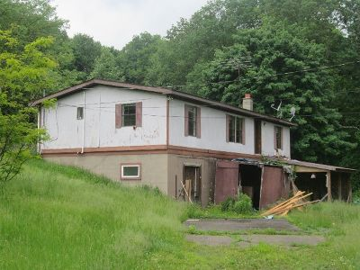 McKean County Single Family Home For Sale: 359 North Open Brook Road
