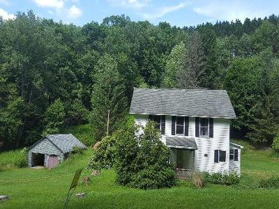 Potter County Single Family Home For Sale: 27 Bush Hill Road