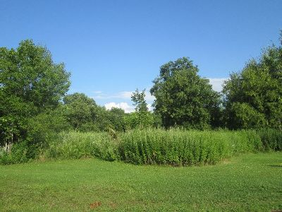 Shinglehouse PA Residential Lots & Land For Sale: $9,999