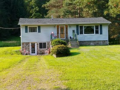Potter County Single Family Home For Sale: 2051 Eleven Mile Road