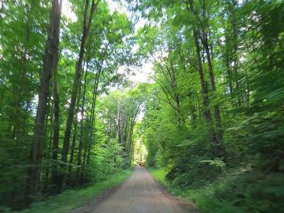 McKean County Residential Lots & Land For Sale: Bloomster Hollow