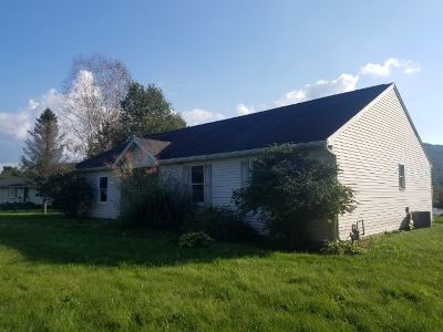 Potter County Single Family Home For Sale: 1787 Us Route 6 W