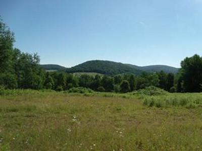 Genesee PA Residential Lots & Land For Sale: $179,900