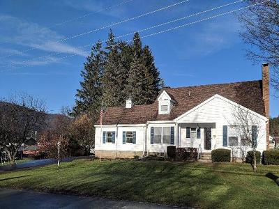 Port Allegany PA Single Family Home For Sale: $139,900