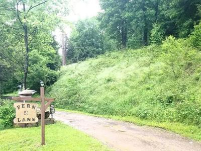 McKean County Camp For Sale: 51 Fern