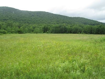 Smethport PA Residential Lots & Land For Sale: $14,900