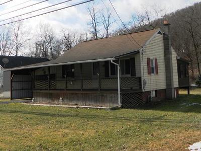 Cameron County Single Family Home For Sale: 541 Sizerville Road