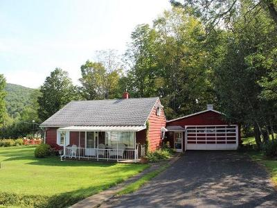 McKean County Single Family Home For Sale: 105 Pear Street