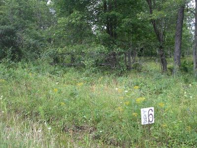 McKean County Residential Lots & Land For Sale: Route 59
