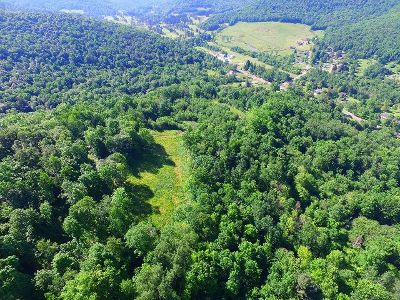 McKean County Residential Lots & Land For Sale: Minard Run Road
