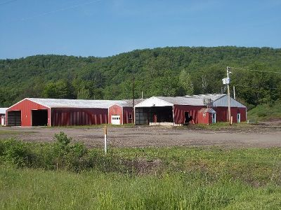 McKean County Commercial For Sale: 10060 Route 46