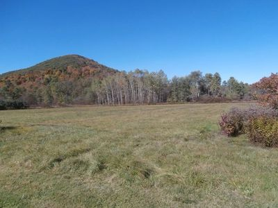 McKean County Residential Lots & Land For Sale: West Branch Road