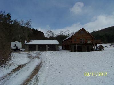 Potter County Single Family Home For Sale: 1083 Route 44