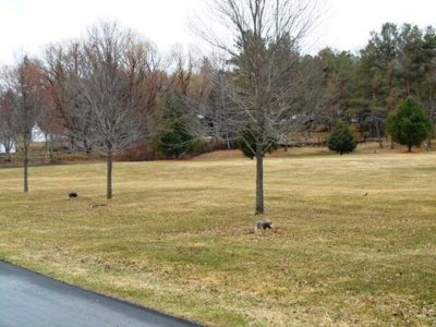 Wellsboro Residential Lots & Land For Sale: - Stickley Street