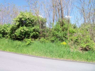 Wellsboro Residential Lots & Land For Sale: Nichols Street