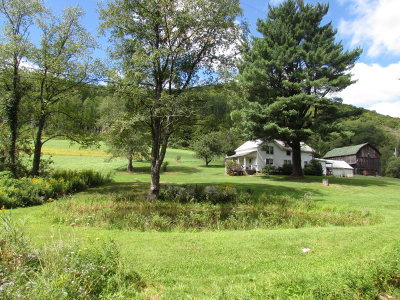 Potter County Single Family Home For Sale: 275 West Branch Fishing Creek Rd