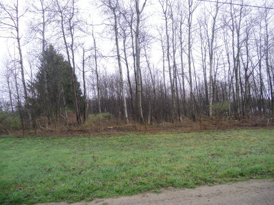 Potter County, McKean County Residential Lots & Land For Sale: 454 Burrows